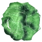 Mělký talíř, dekor vinný list 32cm zelený