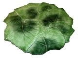 Servírovací tác 34 cm, dekor vinný list, zelený